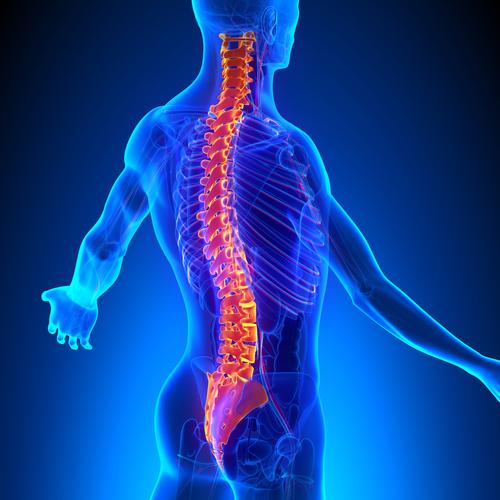 Chiropractic Symptom